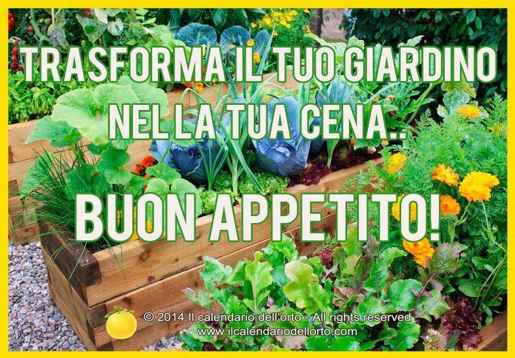 Trasforma il tuo giardino nella tua cena.. BUON APPETITO!