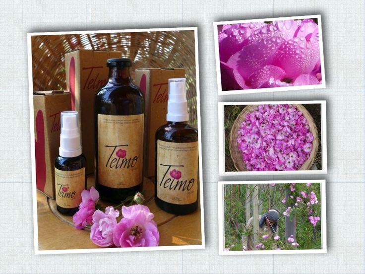 Loción Telmo es Agua de Rosas Pura elaborada a partir de agua de manantial y rosa centifolia cultivada orgánicamente en Tibaná, Boyacá.