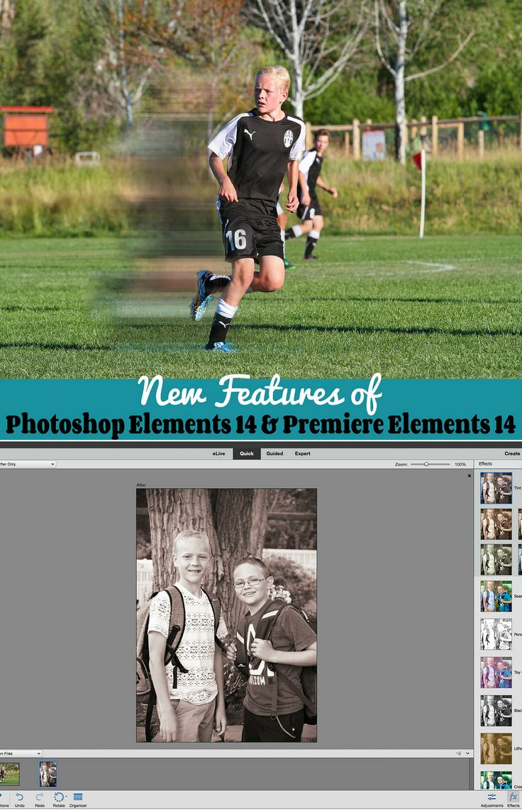 New Feature of Photoshop Elements 14 and Premiere Elements #photography #giveaway (3 copies of Photoshop Elements 14 & Premiere Elements)