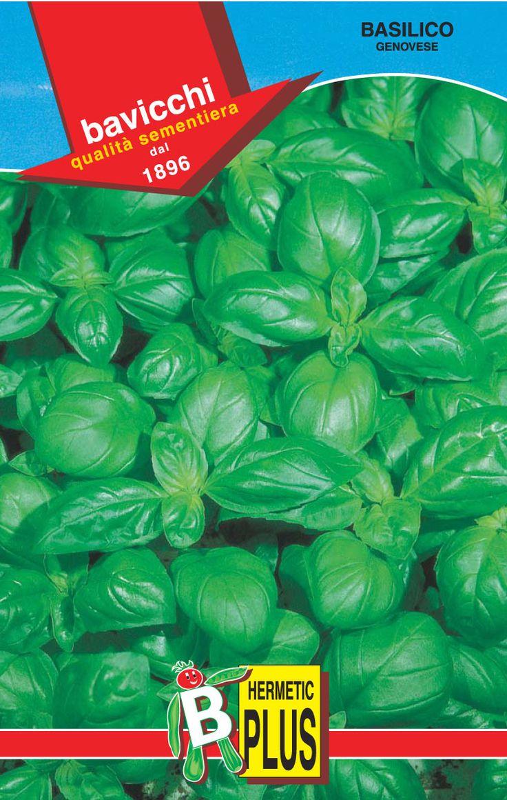 163 best seeds seeds seeds images on pinterest seed catalogs