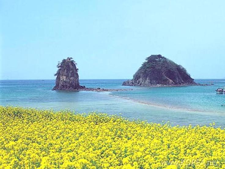 Jeju-do, Island of Jeju, Korea.