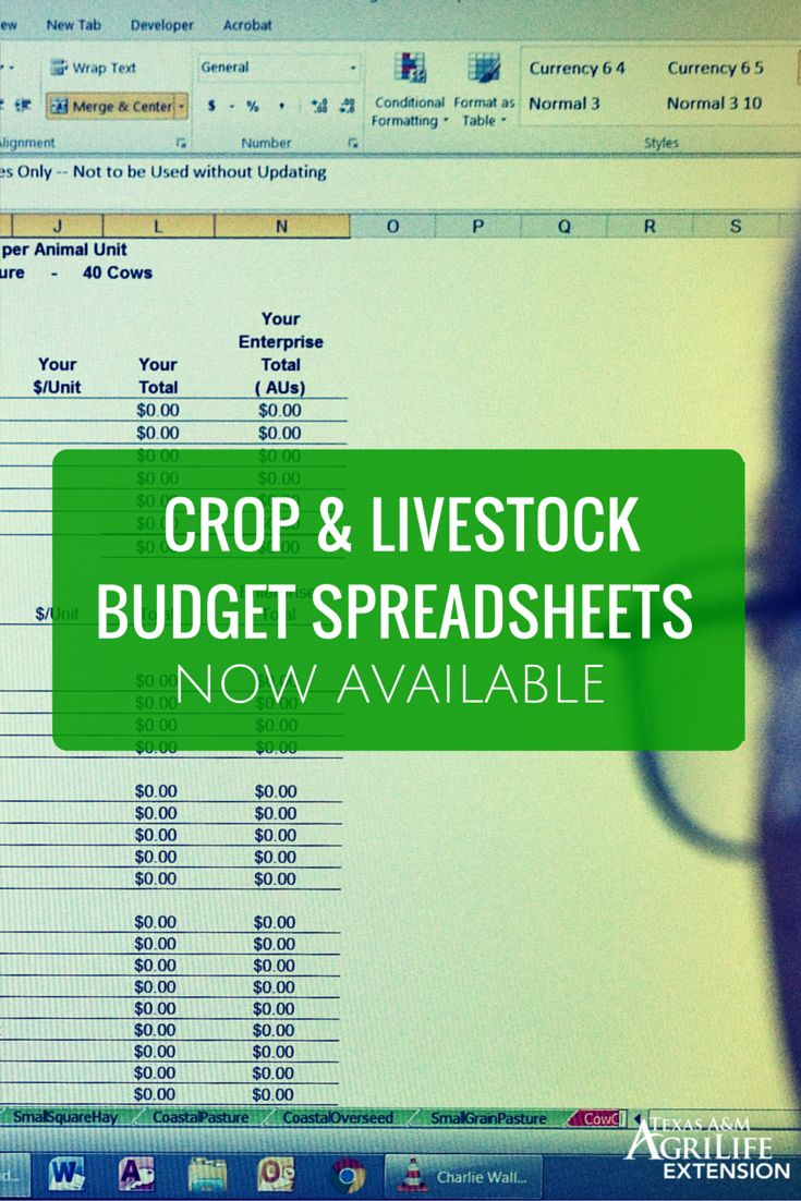 Crop budget template 28 images uga crop budgets 171 seminole crop budget template 17 best images about a m agrilife extension on pronofoot35fo Image collections