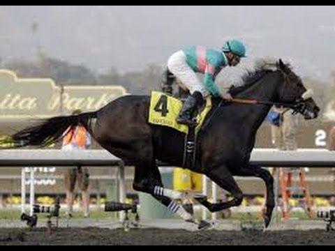 Horse Races |  Horse Racing Schedule |  Horses Racing | Horse Racing Nation