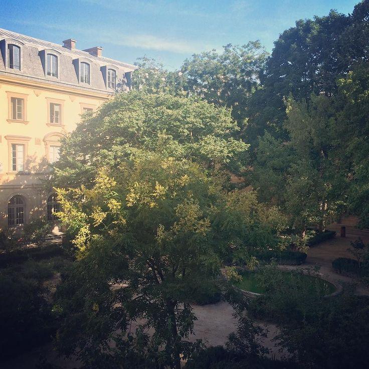La cour rafraîchissante de l'Ecole Normale Supérieure // École Normale Superieure's shady courtyard. ---- #paris #inspiration #parisbuilding #quartierlatin #latinquarter #escapetheheat