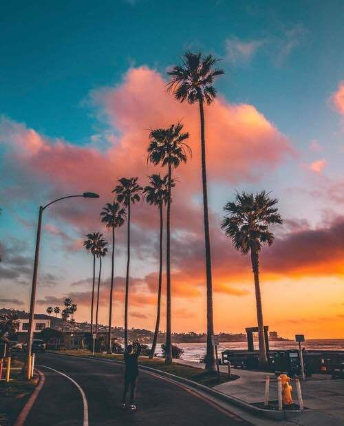 Cotton candy skies | Golden hour | Sky aesthetic, Palm ...