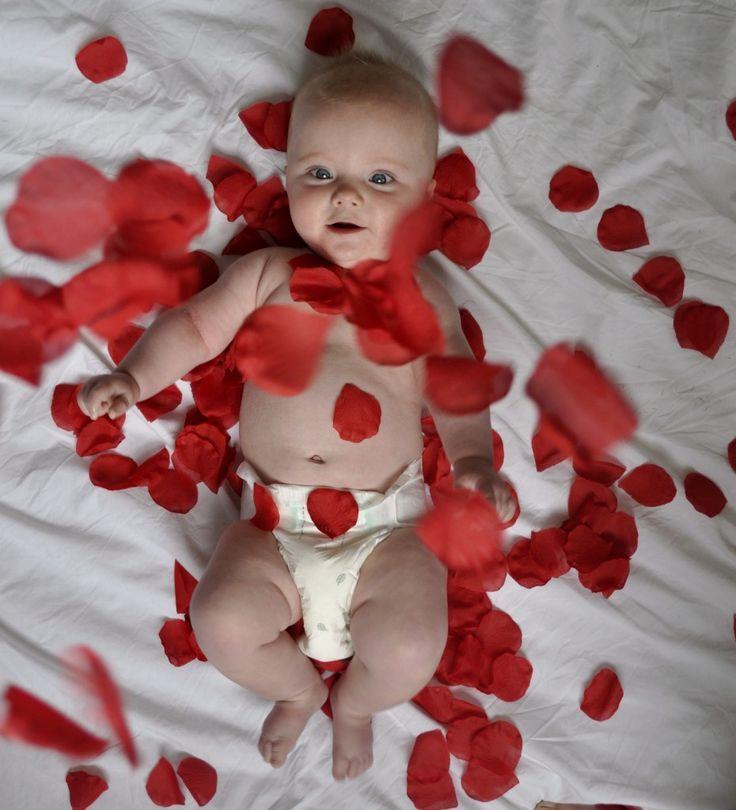 Arthur recreates …: Movies Scenes, Baby Arthur, American Beauty, Classic Movies, Adorable Baby, Photo Baby, Photo Idea, Arthur Recreation, Roses Petals