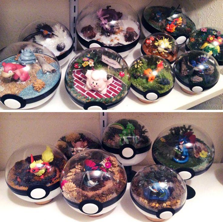 Lauren une très grande fan de Pokémon qui vit à Lewisville, au Texas, au États-Unis a une une idée créative magnifique. Elle a construit des Pokeballs sous la forme de terrariums qui renferme des Pokémon ainsi qu'un micro système, des petits arbres, des petites fleurs, etc... La vente a eu l…