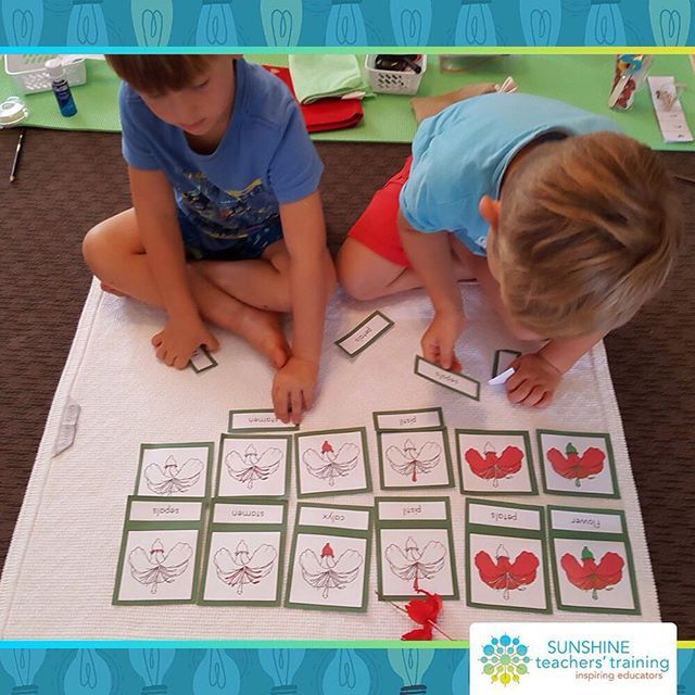Look! Baxter and Fletcher are working with the terminology/nomenclature cards of a flower. 👦🏼👦🏼 . Through this activity, they are learning that a flower has different parts to it and each part has a name. They learn the names of the parts of the hibiscus flower: petals, stamen, pistil, calyx, sepals and stem. They developed an interest in the flower as we dissected it together. . Can they absorb everything at once? No.. but if we make these materials available to them and give them the…