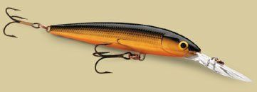 Rapala Down Deep Husky Jerk 12 Fishing Lure (Gold) >>> Click image for more details.