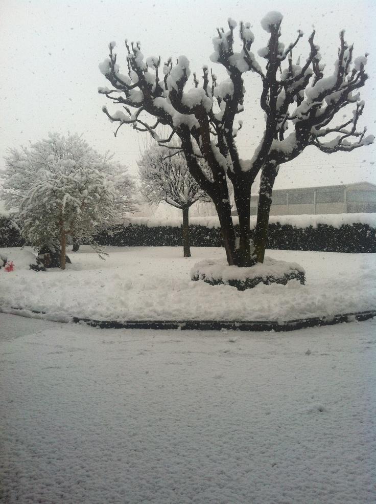 Snow!❄⛄