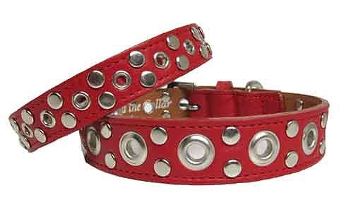 The eyelet & stud leather dog collar is another beautiful way to add to you dog collar collection. A great look for both boy and girl dogs.