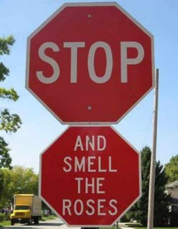 Unique Stop Signs Ideas On Pinterest Antique Bar Pub Ideas - Car sign meaningsfunny alternative road signs car keys