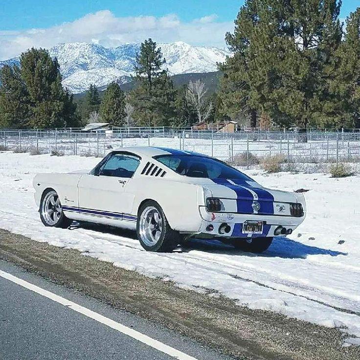 "3,671 Me gusta, 8 comentarios - @muzzy289 en Instagram: ""1965 Ford Mustang Fastback Restomod"""
