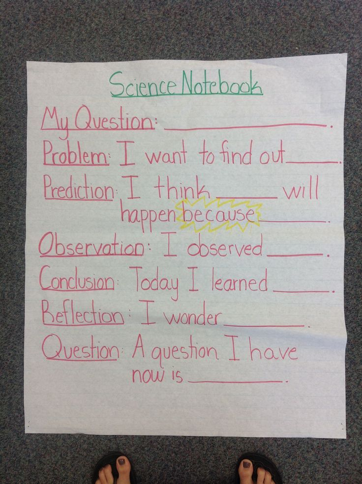 Science Notebook Anchor Chart - Sentence Stems