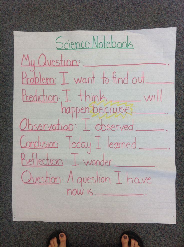Science Notebook Anchor Chart - Sentence Stems