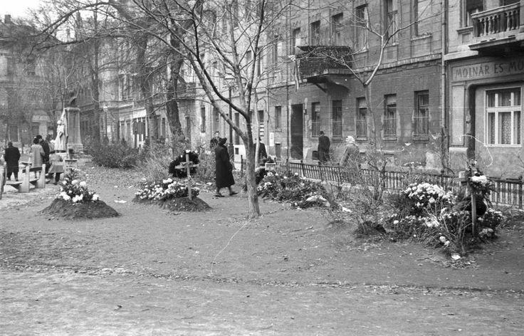 Károlyi kert, jobbra a Magyar utca házai.