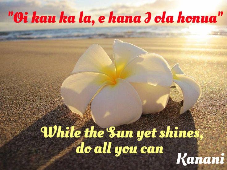 Oi kau ka lau, E hana I ola Honua (life your life while the sun shines, Hawaiian proverb)