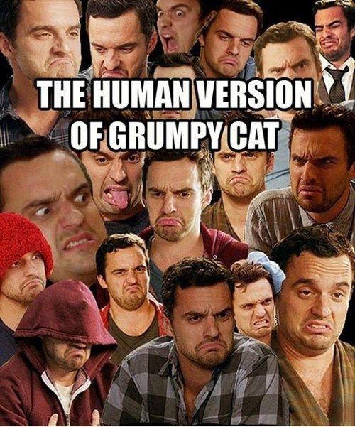 Nick Miller=human grumpy cat.... Hahahahahahahah tooo funny