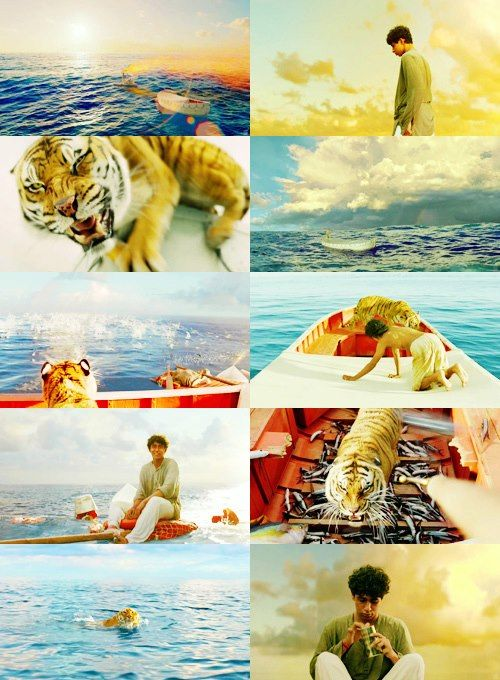 Richard Parker - Life of Pi | The most beautiful movie.