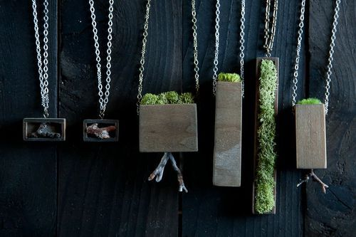Nature in a Necklace » Mr. Lentz
