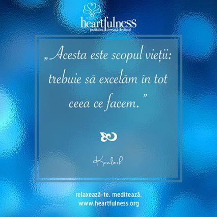 """""""Acesta este scopul vieții: trebuie să excelăm în tot ceea ce facem."""" ~ Daaji #heartfulness   #hfnro   #knowbyheart Heartfulness România - Google+"""