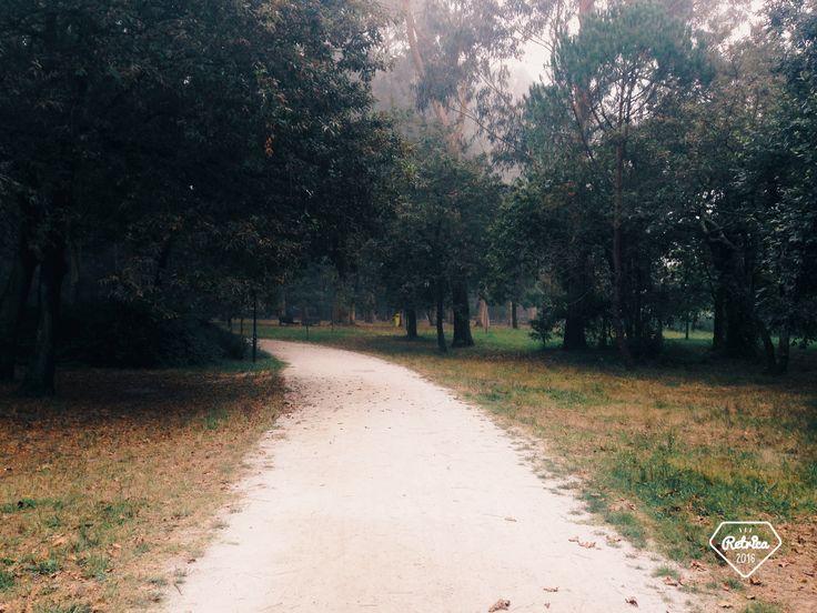 Parque da cidade do Porto Portugal🇵🇹