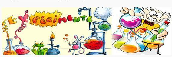 100 expériences à faire en classe pour des séances de sciences passionnantes et ludiques