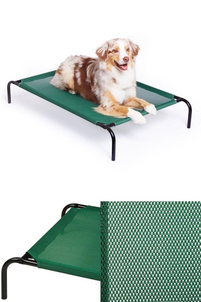 coolaroo dog bed extra large