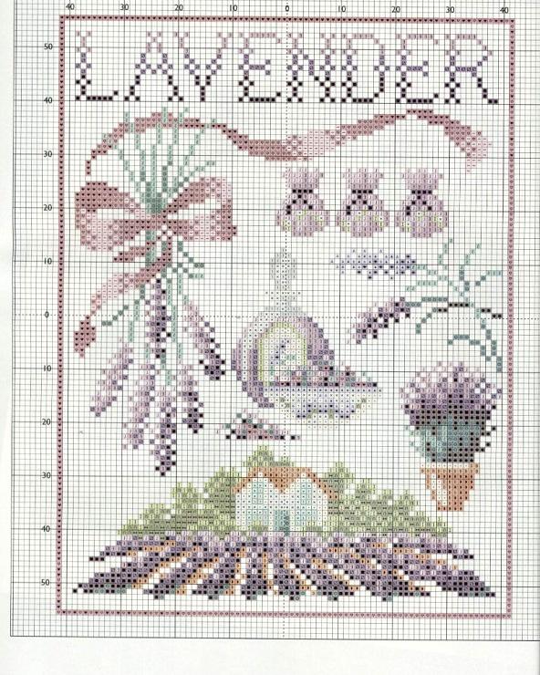 .Lavender 1/1