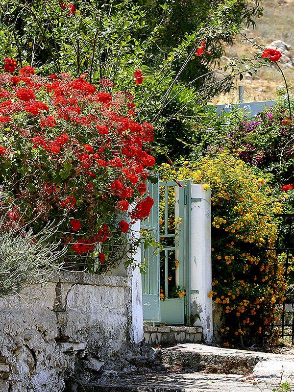 Beautiful garden entrance of an cretan house. Found in the village of Listaro, near Sivas, in the south of Crete.  #garden #flowers #entrance #cretanhouse #listaros #messara #mires #crete #greece