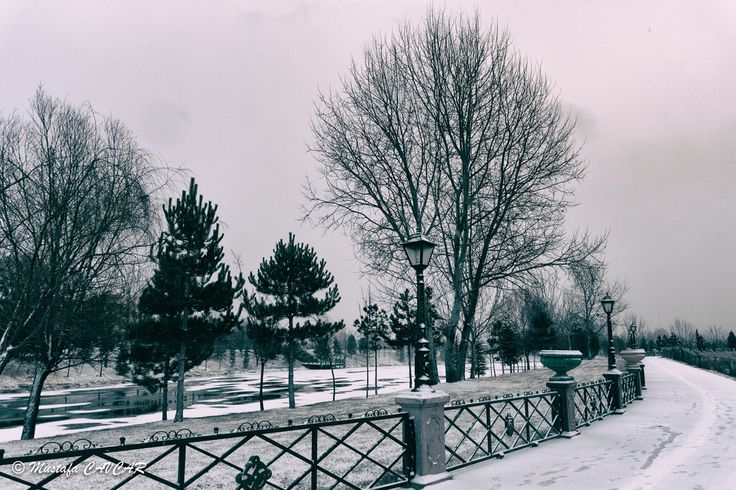 Winter time (1100)