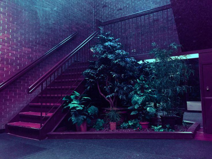 Neon aesthetic, dark tropic, violet, blue, pink, light and dark