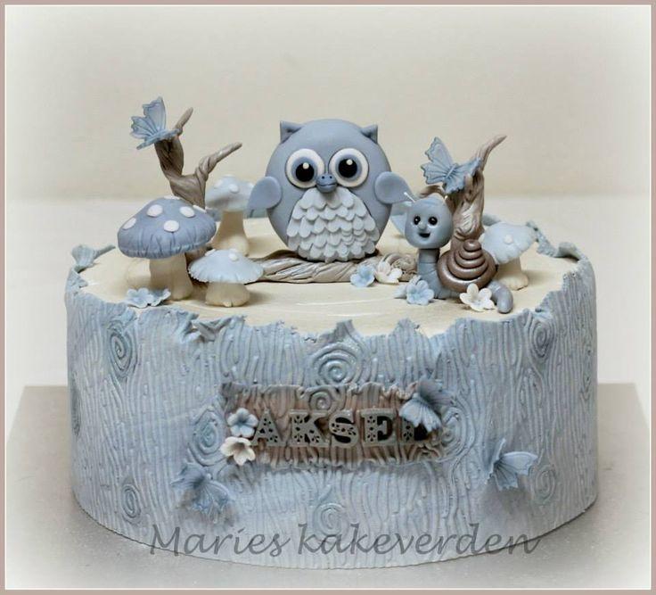 babyshower cake, christening cake, babtism cake, beautiful cake, boy cake, owl cake