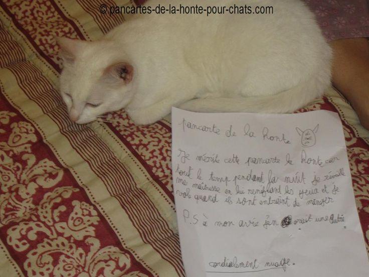 Ho la belle pancarte :) Quelle petit voleur :p