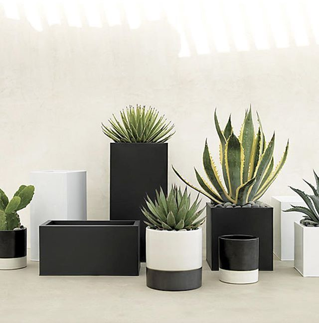 Black Planter Squares Up Sleek And Modern. Protected For Indoor And Outdoor  Settings, Matte