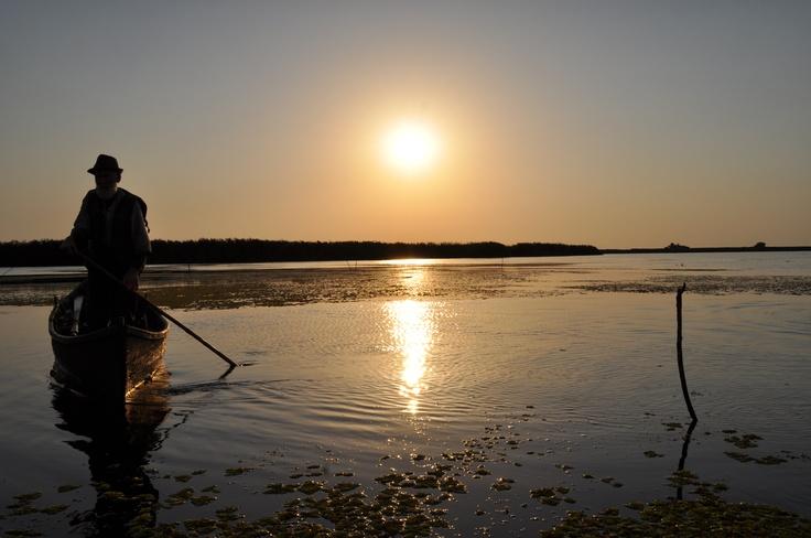 Danube Delta - Sunset