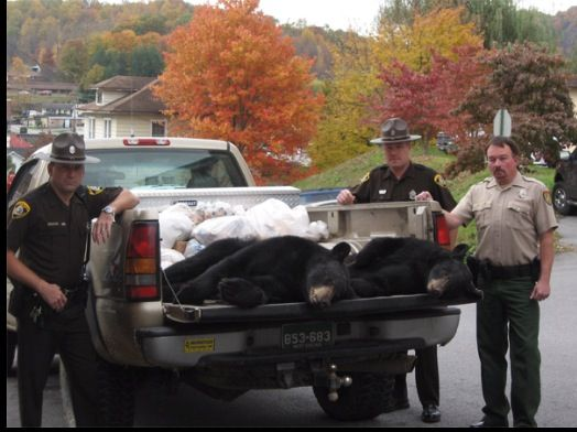 1000 Images About Wife Of A Wv Game Warden On Pinterest