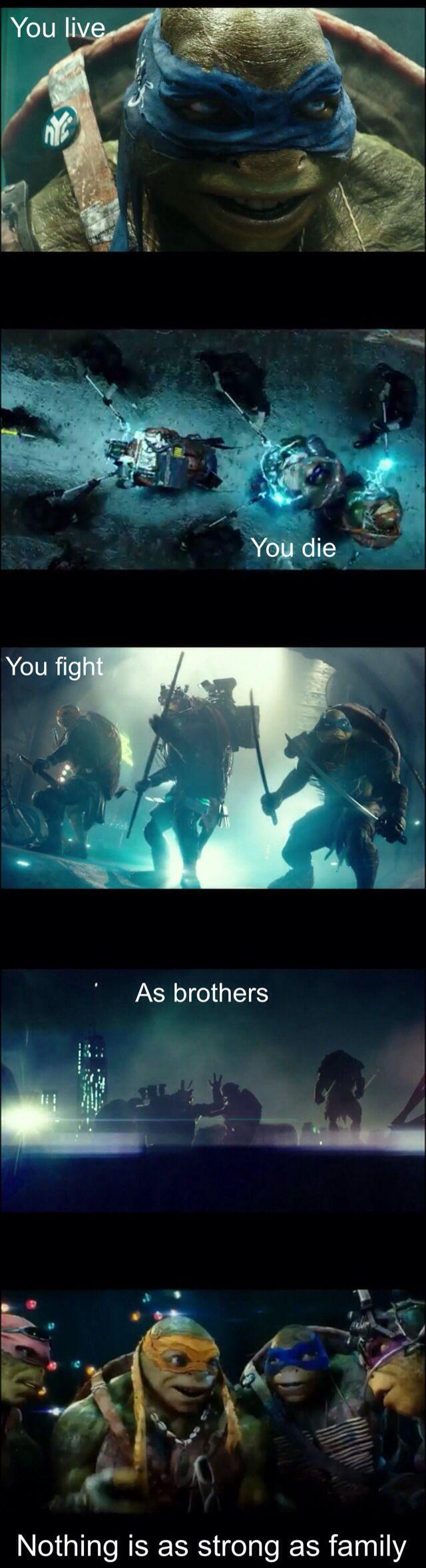 Worst ninja turtle movie EVER! However I'll always love my boys. Michael Bay can go *#%* himself.