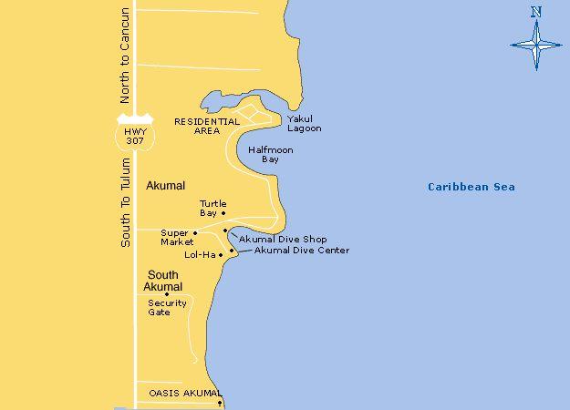 Akumal Bay Beach Playa Del Carmen Snorkeling