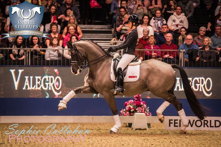 Charlotte Dujardin & Valegro - Olympia Horse Show 2016 I via sophiecallahanblog.com I #equinephotography #photography #equineblogger