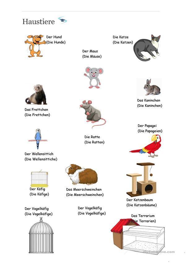 122 besten Deutsch für Kinder (Arbeitsblätter) Bilder auf Pinterest ...