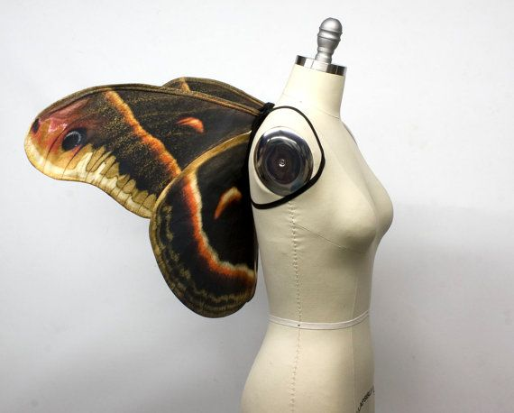 Cecropia Moth Costume Wings for Halloween, Brown Woodland Fairy Costume