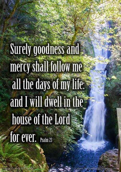 The Lord is my shepherd; I shall not want.2 He maketh me to lie down in green pastures: he leadeth me beside the still waters.3 He restoreth my soul: he leadeth me in the paths of righteousness for his name's sake.4 Yea though I walk through the valley of the shadow of death I will fear no evil: for thou art with me; thy rod and thy staff they comfort me.5 Thou preparest a table before me in the presence of mine enemies: thou anointest my head with oil; my cup runneth over.6 Surely goodness…