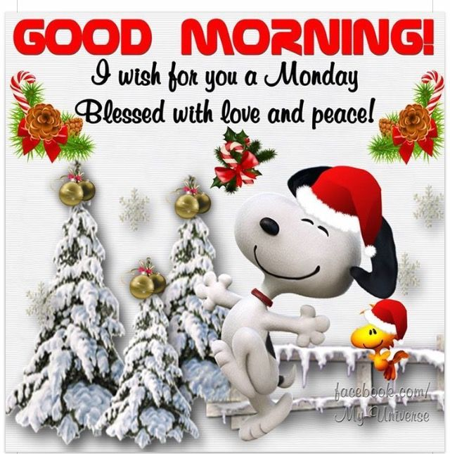Christmas Good Morning Quotes: 618 Best Good Morning Images On Pinterest