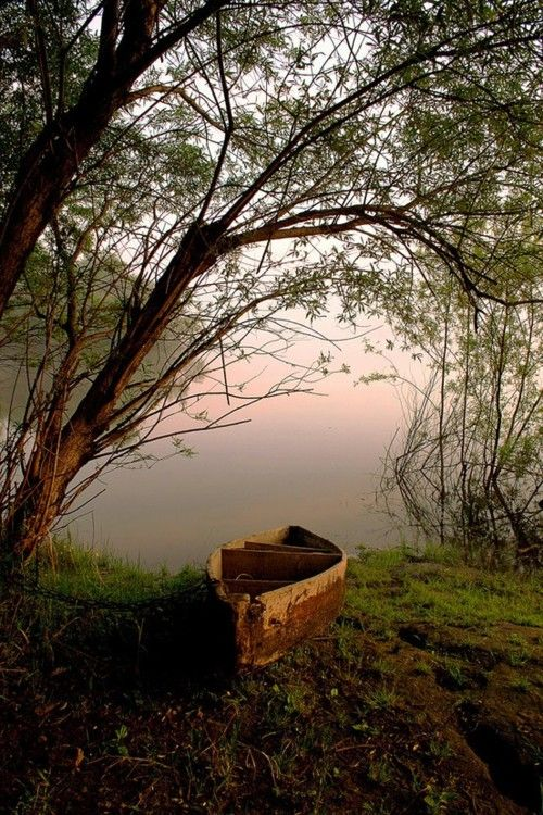.Old Boats, Tranquil, Nature, Canoes Trips, Beautiful Places, Lakes, Sailing Away, Cabin Fever, Photography
