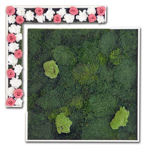 Glamour - Stabilized #moss, ball moss, red #rosebuds, white #gardenias. #Wood #frames. - by #LinfaDecor