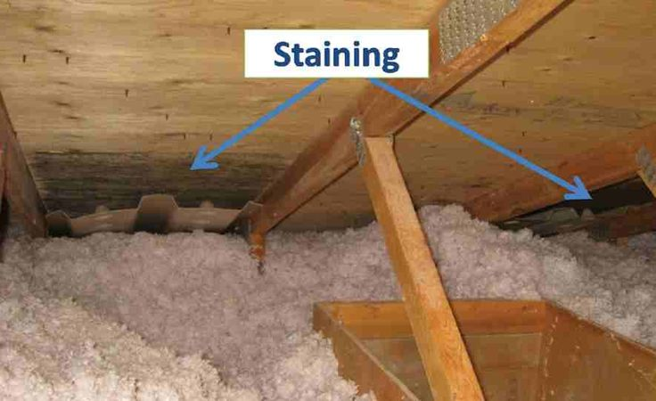 This Photo Shows Sheathing Mold Near The Ventilation