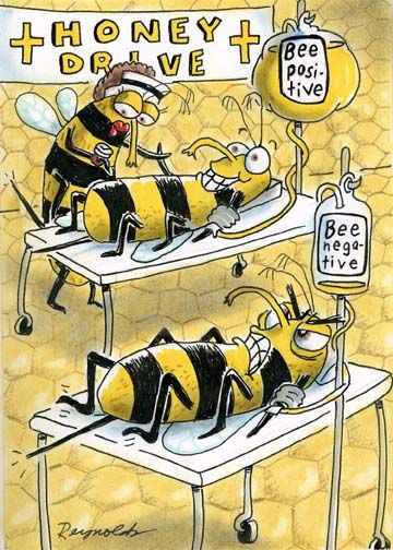 This may sting a little. #nurse #cartoon  Call A1 Bee Specialists in Bloomfield Hills, MI today at (248) 467-4849 to schedule an appointment if you've got a stinging insect problem around your house or place of business! Visit www.a1beespeciali... for more information!