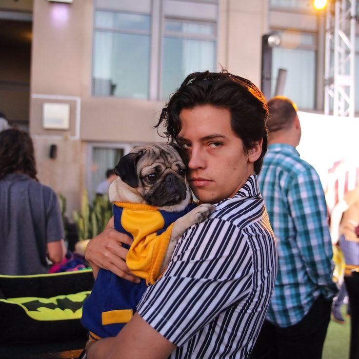 Warner Bros. TV (@warnerbrostv)   Doug The PugVerified account @itsdougthepug  23h23 hours ago  More   They should have a pug on Riverdale