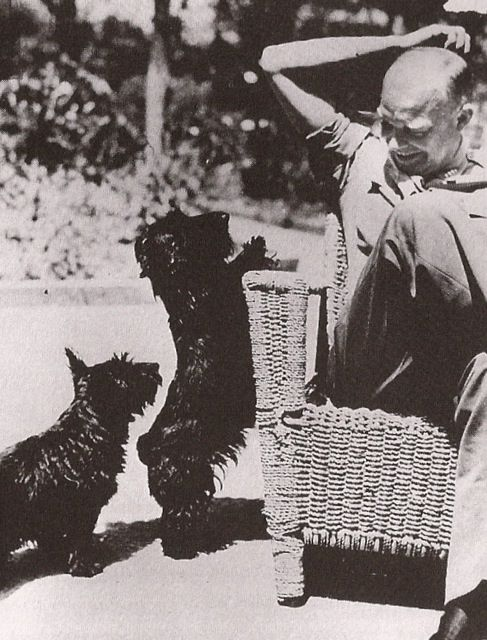 General Eisenhower had two Scottish Terriers with him during the Africa campaign. Their names were Caacie and Telek. There were rumors around headquarters that Telek had been a gift to the General from his Army driver and mistress, Kay Summersby.